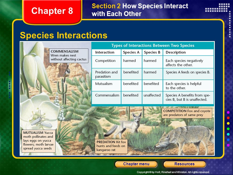 Chapter 8 Species Interactions
