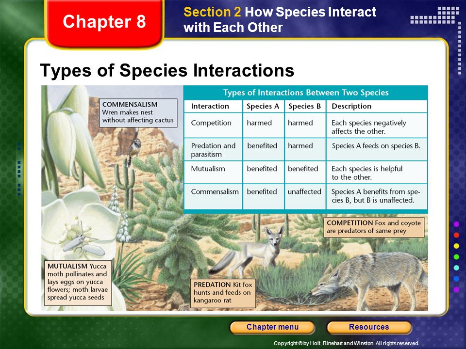 Types of Species Interactions