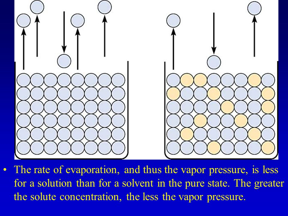 The rate of evaporation, and thus the vapor pressure, is less for a solution than for a solvent in the pure state.