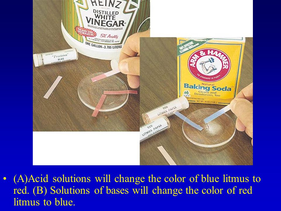(A)Acid solutions will change the color of blue litmus to red