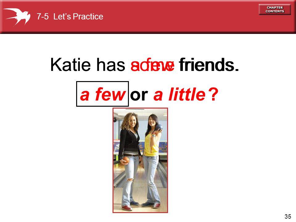 Katie has some friends. Katie has a few friends. a few or a little