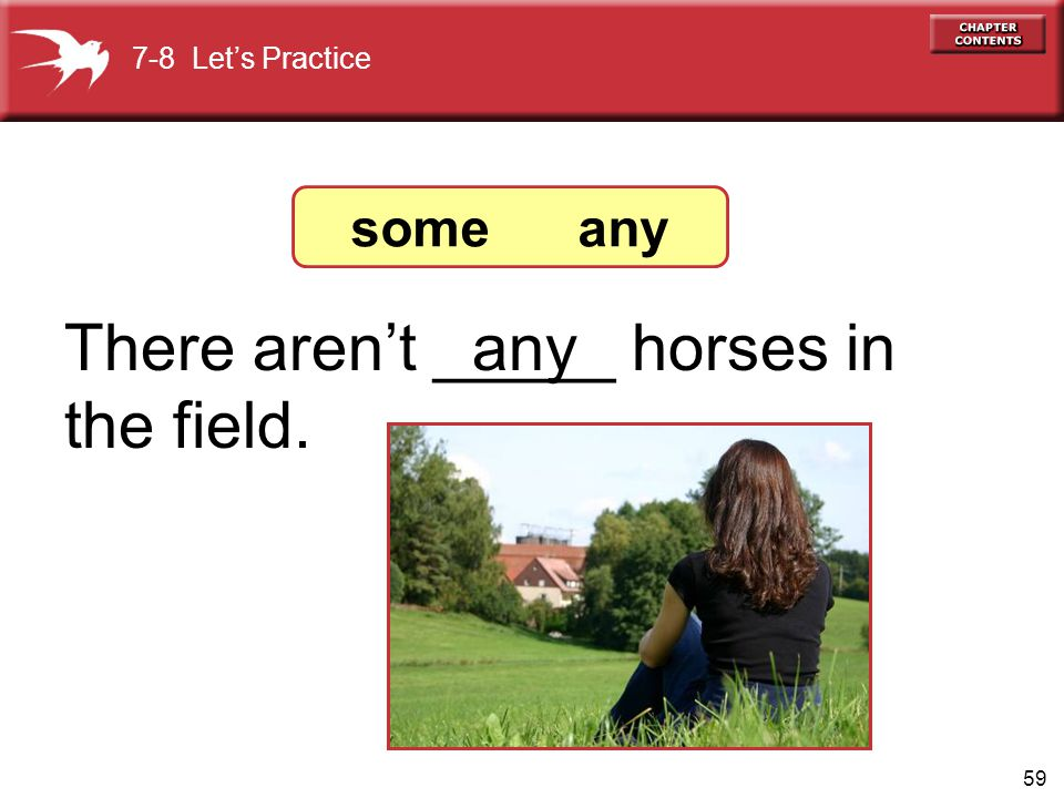 There aren't _____ horses in the field. any