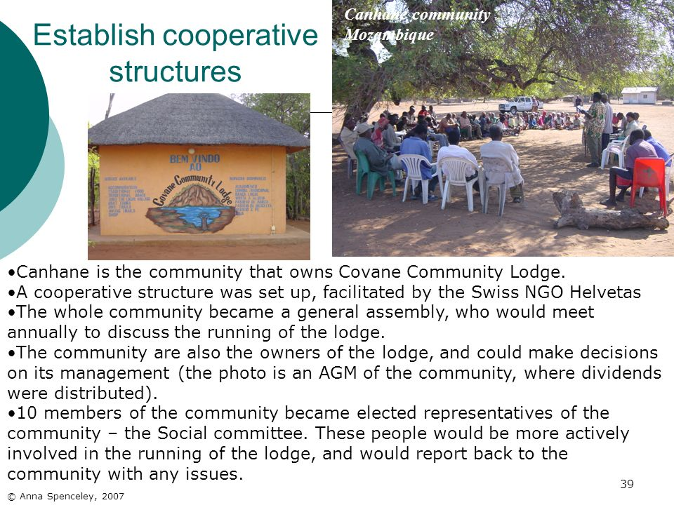 Establish cooperative structures