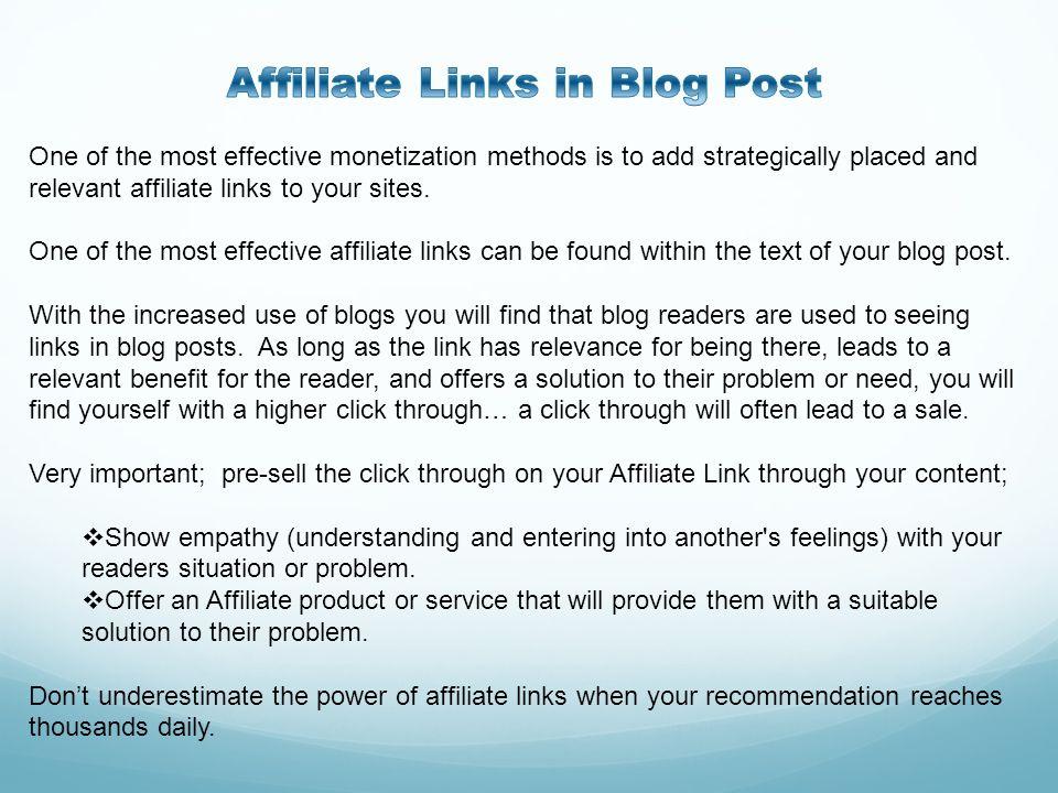 Affiliate Links in Blog Post