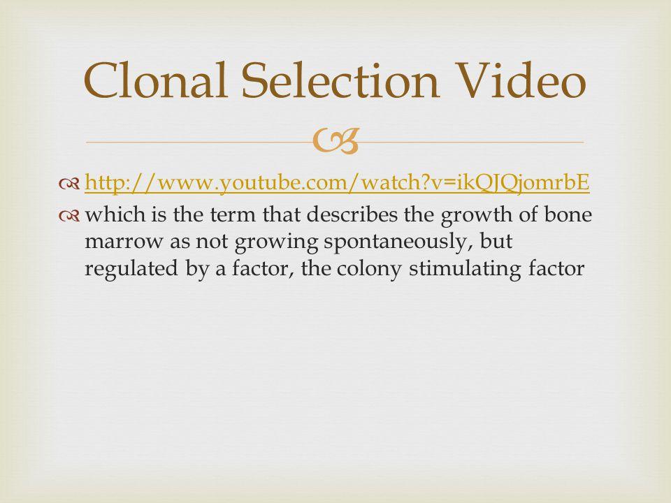 Clonal Selection Video