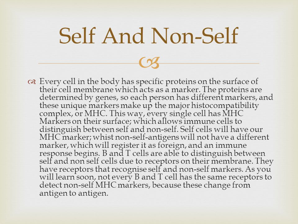 Self And Non-Self