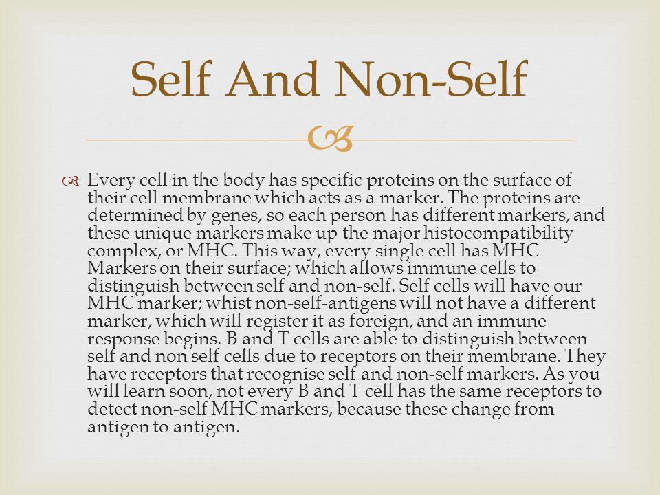 Self And Non-Self
