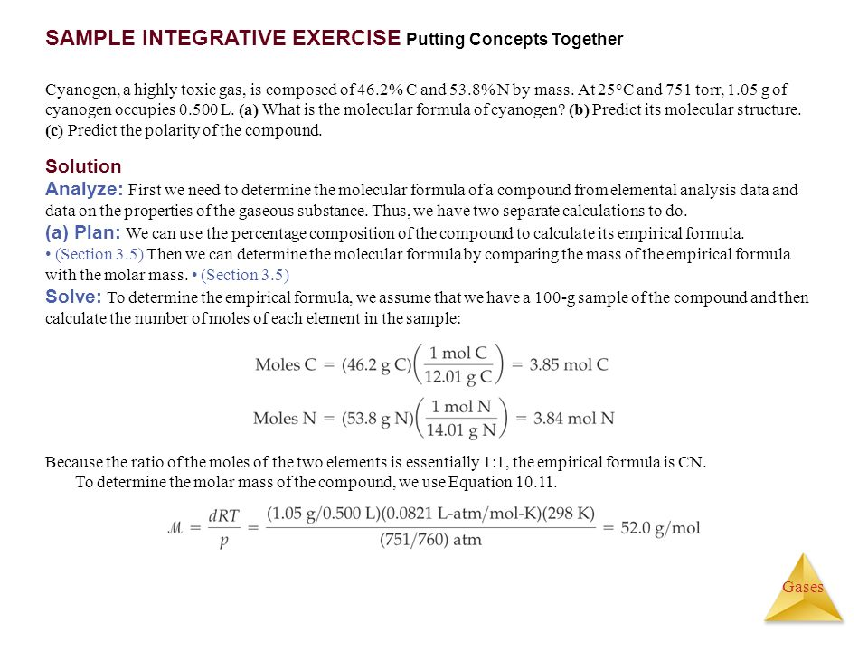 SAMPLE INTEGRATIVE EXERCISE Putting Concepts Together
