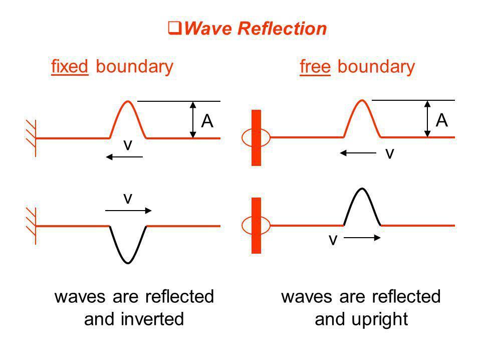 Wave Reflection fixed boundary. free boundary. A. A. v. v. v. v. waves are reflected. and inverted.