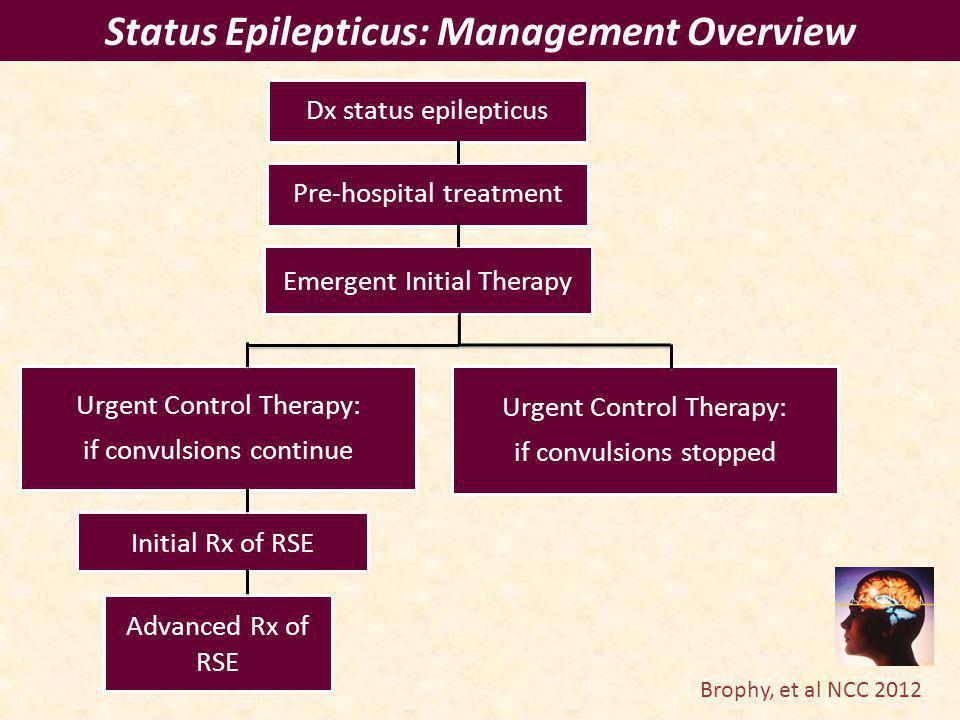 Status Epilepticus: Management Overview