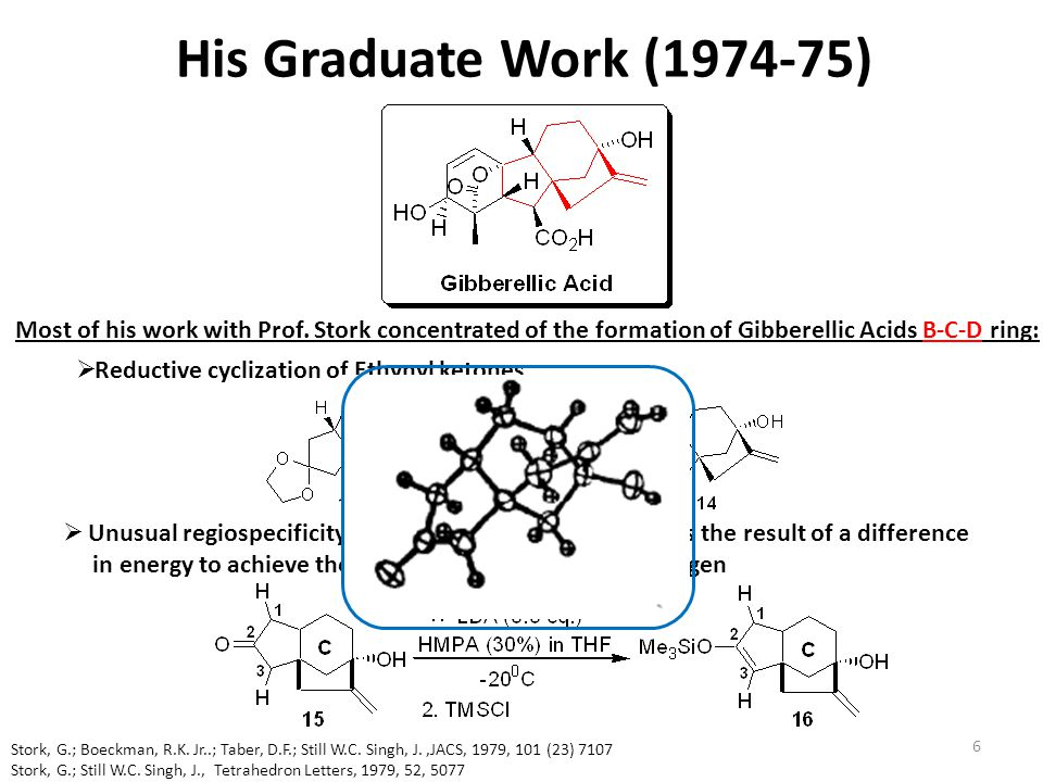 His Graduate Work (1974-75) Most of his work with Prof. Stork concentrated of the formation of Gibberellic Acids B-C-D ring: