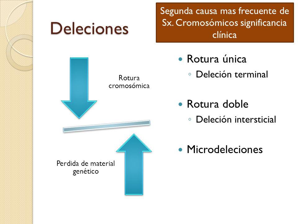 Deleciones Rotura única Rotura doble Microdeleciones