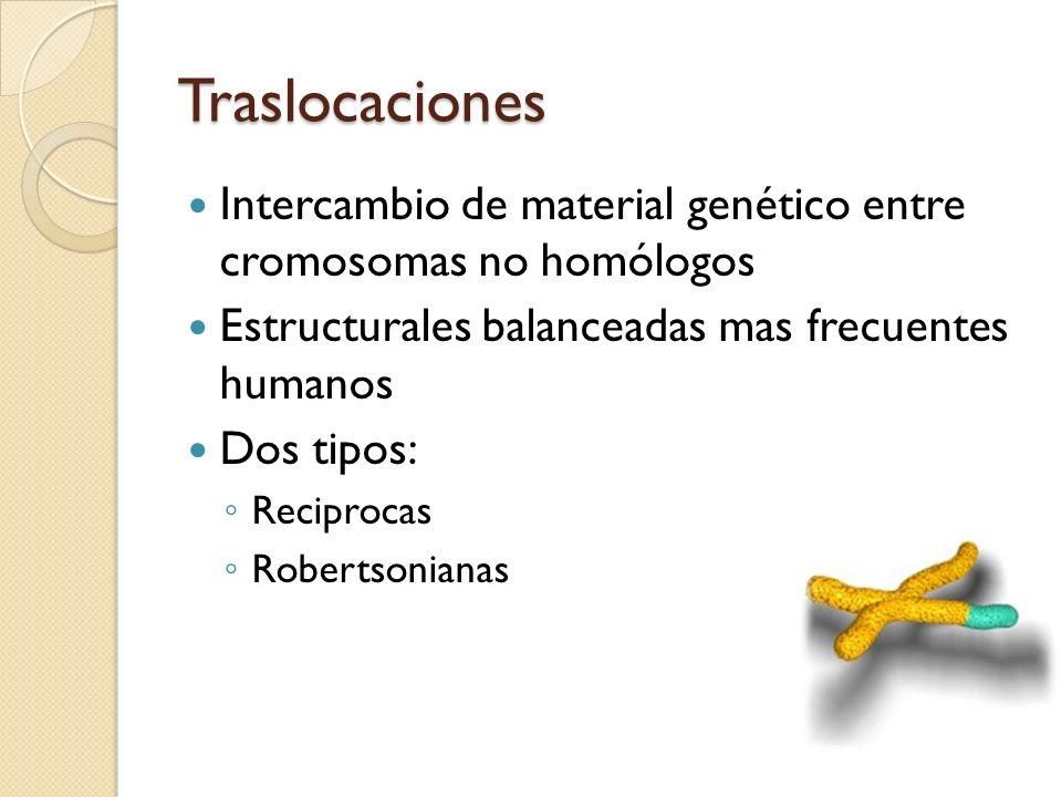 Traslocaciones Intercambio de material genético entre cromosomas no homólogos. Estructurales balanceadas mas frecuentes humanos.
