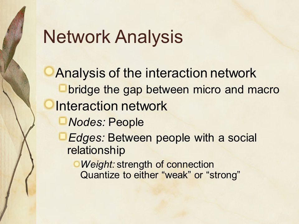 Network Analysis Analysis of the interaction network