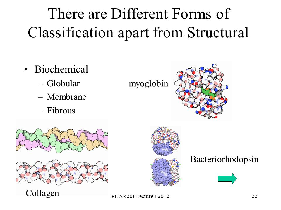 There are Different Forms of Classification apart from Structural