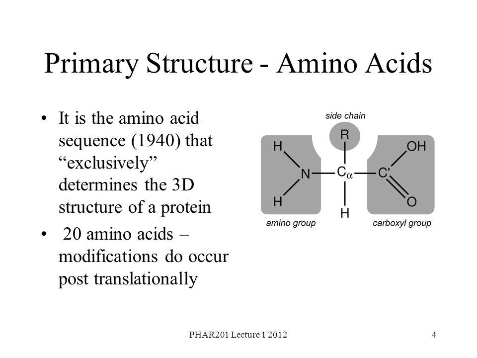 Primary Structure - Amino Acids