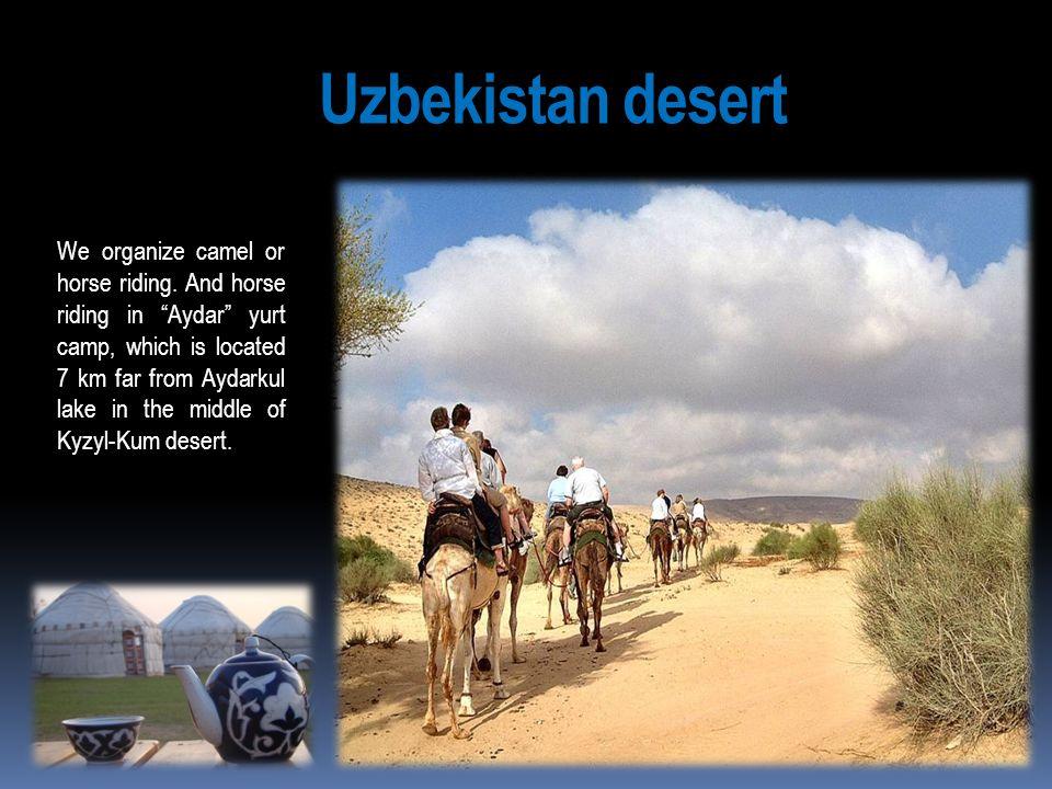 Uzbekistan desert