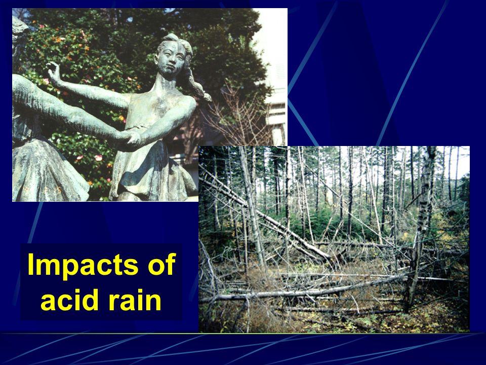 Impacts of acid rain