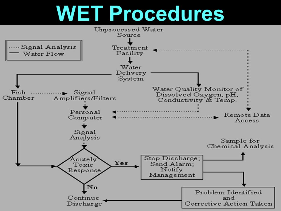 WET Procedures