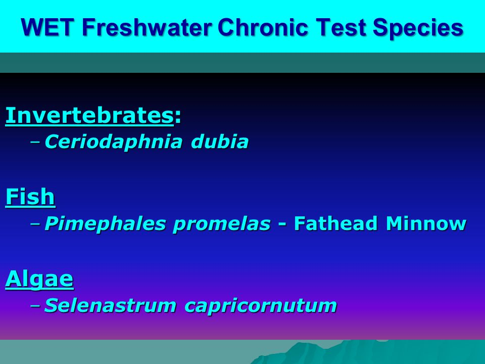 WET Freshwater Chronic Test Species