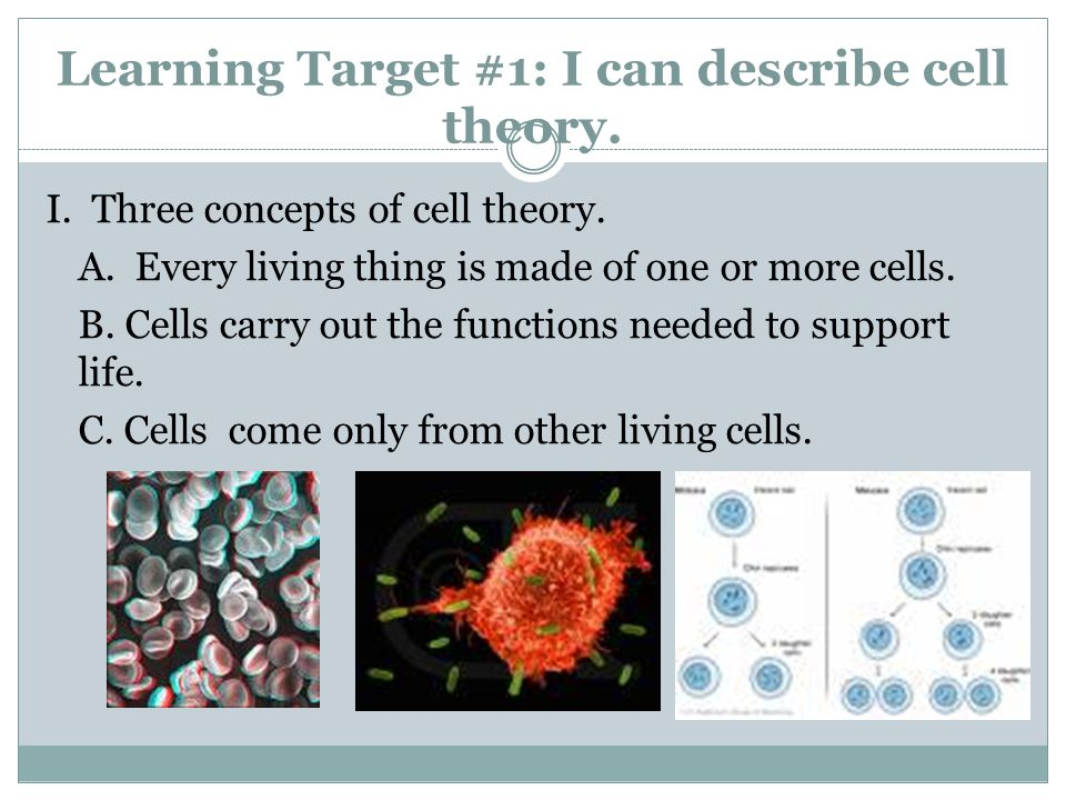 Learning Target #1: I can describe cell theory.