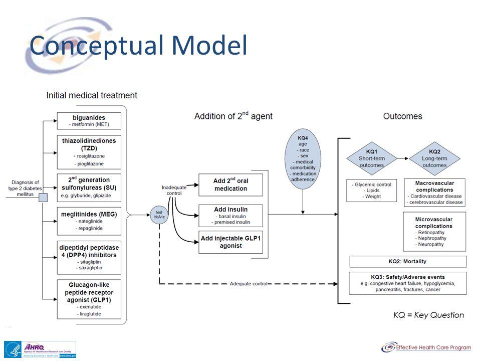 Conceptual Model Conceptual Model