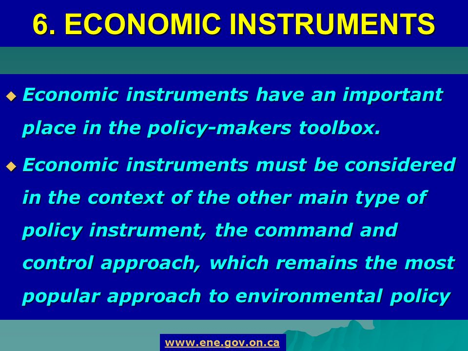6. ECONOMIC INSTRUMENTS Economic instruments have an important place in the policy-makers toolbox.