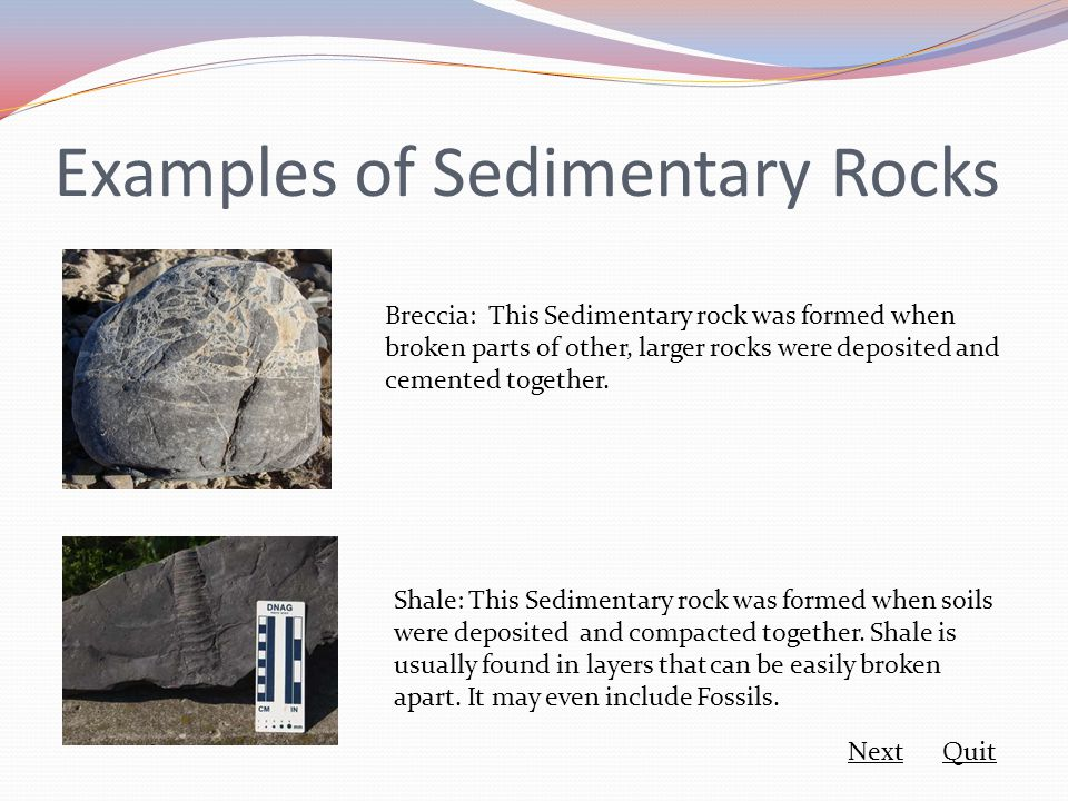 Examples of Sedimentary Rocks