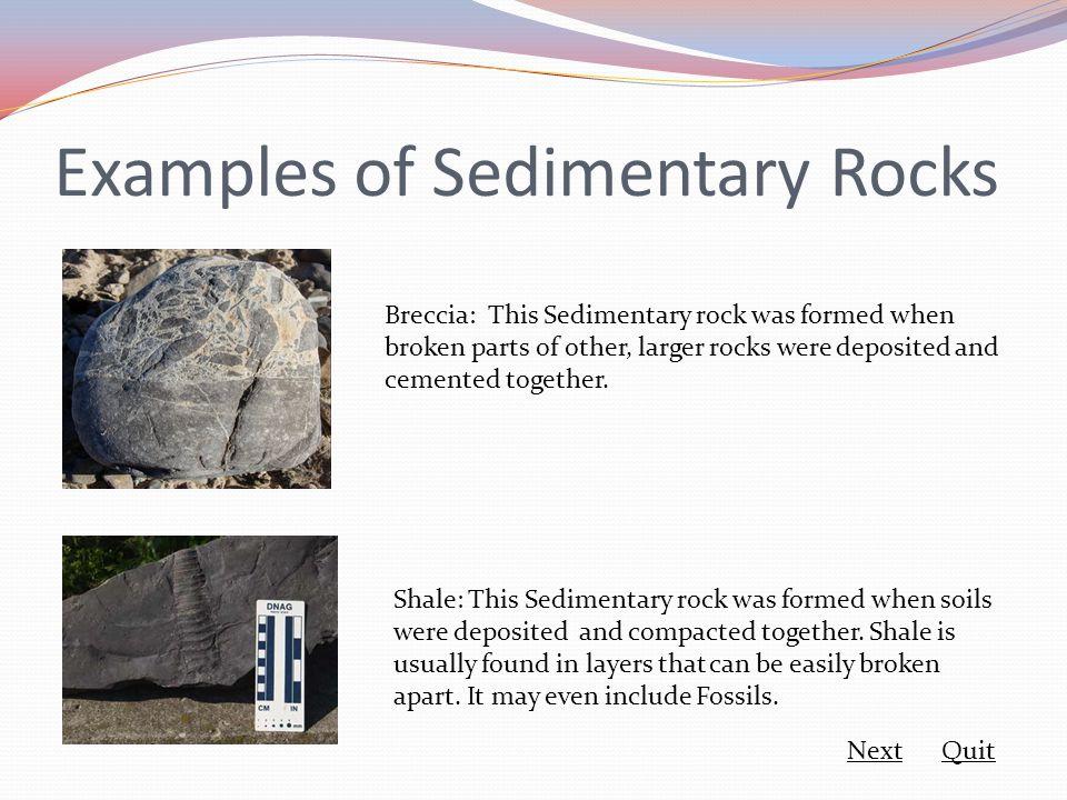 Examples of Sedimentary Rocks