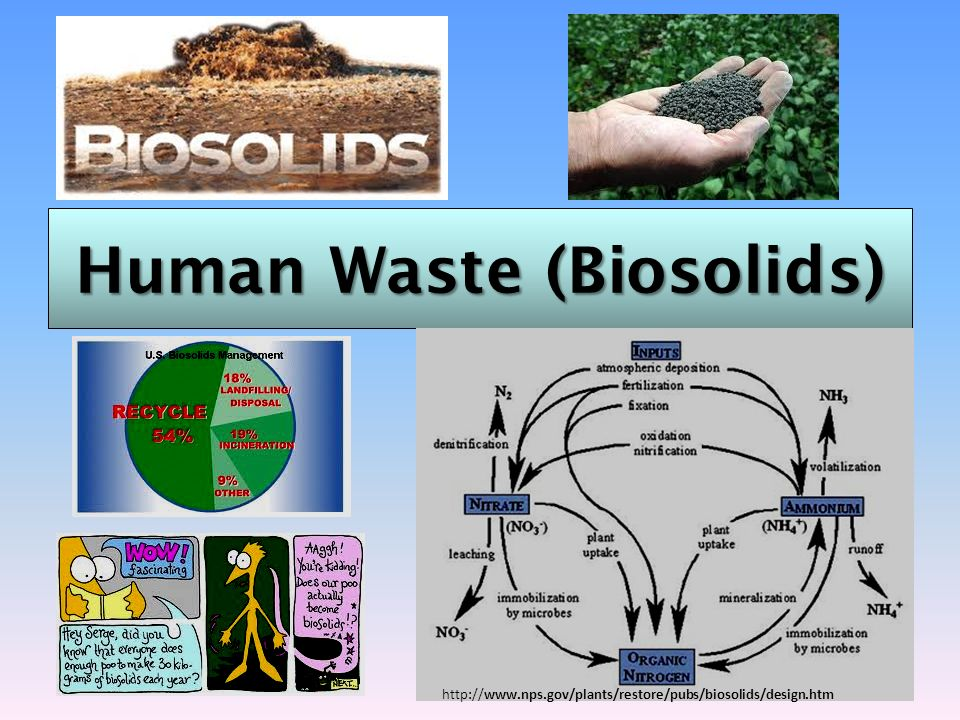 Human Waste (Biosolids)