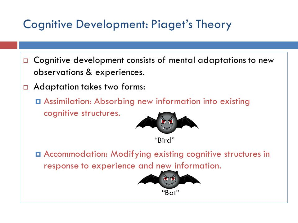 Cognitive Development: Piaget's Theory