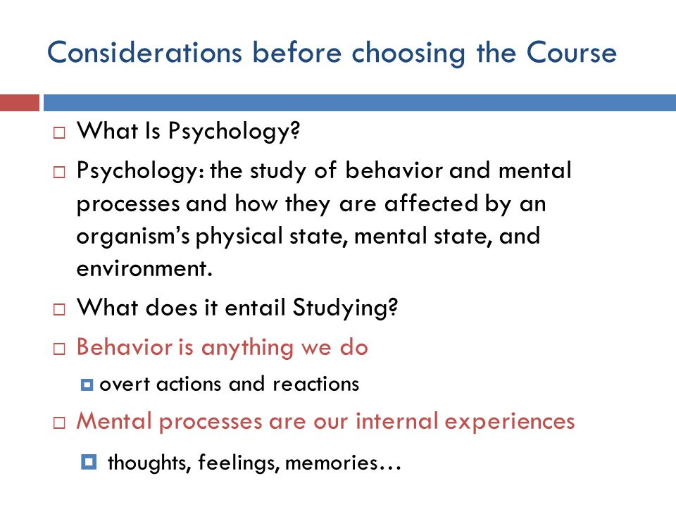 Considerations before choosing the Course