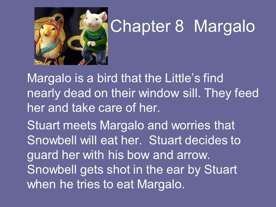 Chapter 8 Margalo Margalo is a bird that the Little's find nearly dead on their window sill. They feed her and take care of her.
