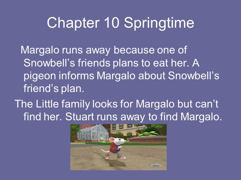 Chapter 10 Springtime Margalo runs away because one of Snowbell's friends plans to eat her. A pigeon informs Margalo about Snowbell's friend's plan.