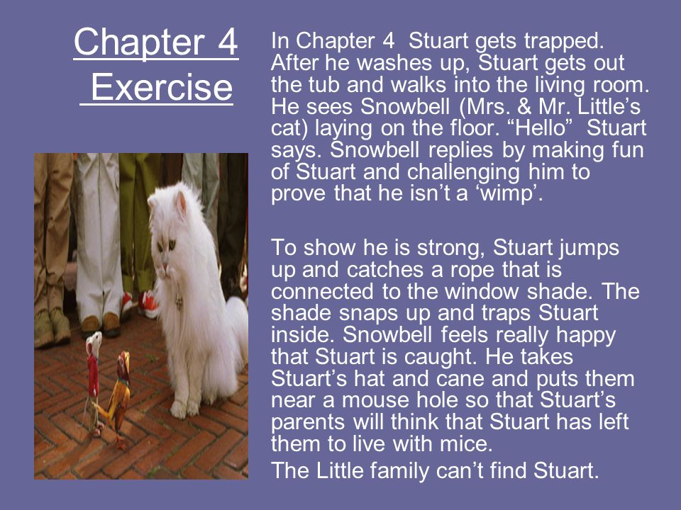 Chapter 4 Exercise