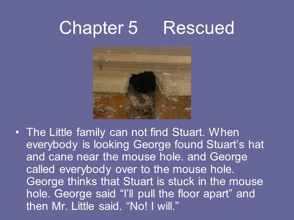Chapter 5 Rescued