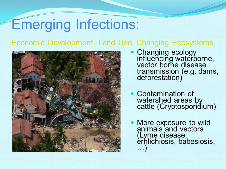 Emerging Infections: Economic Development, Land Use, Changing Ecosystems