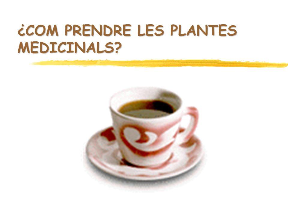 ¿COM PRENDRE LES PLANTES MEDICINALS