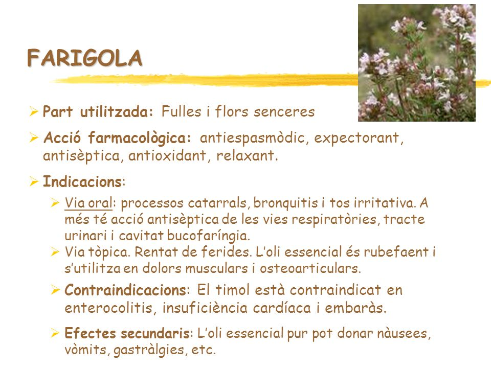 FARIGOLA Part utilitzada: Fulles i flors senceres