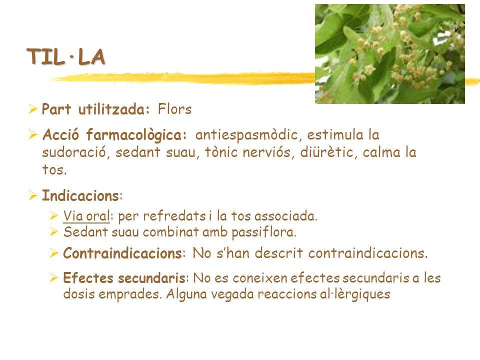 TIL·LA Part utilitzada: Flors