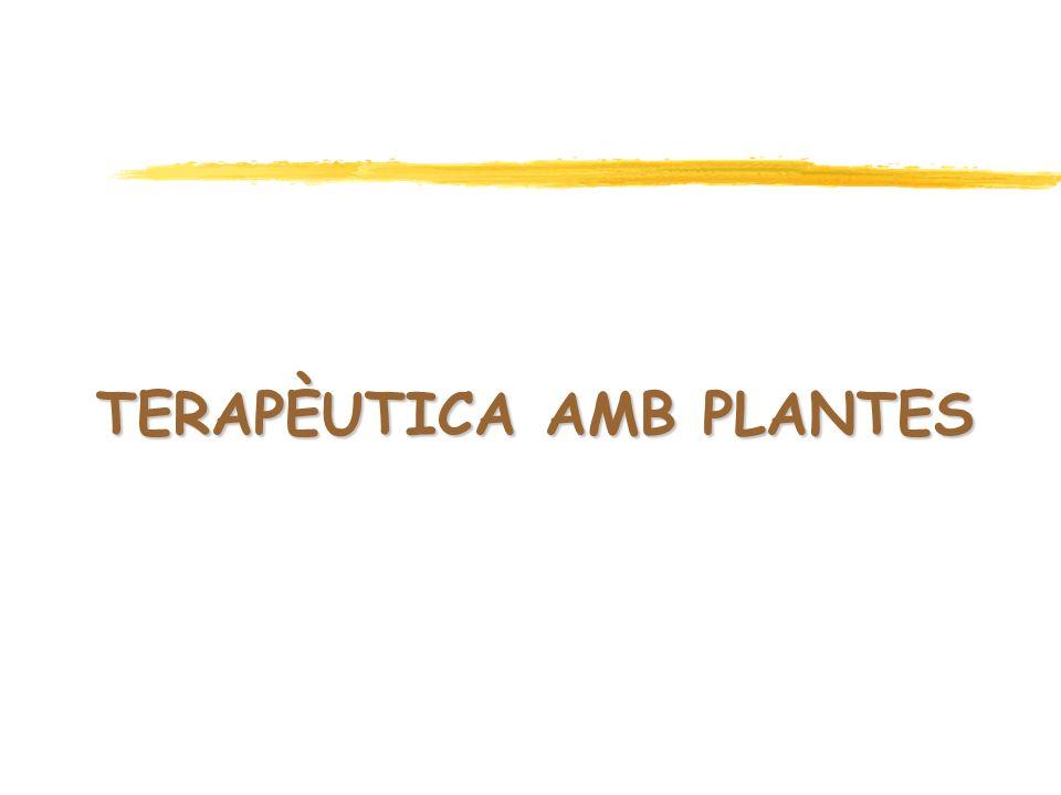 TERAPÈUTICA AMB PLANTES