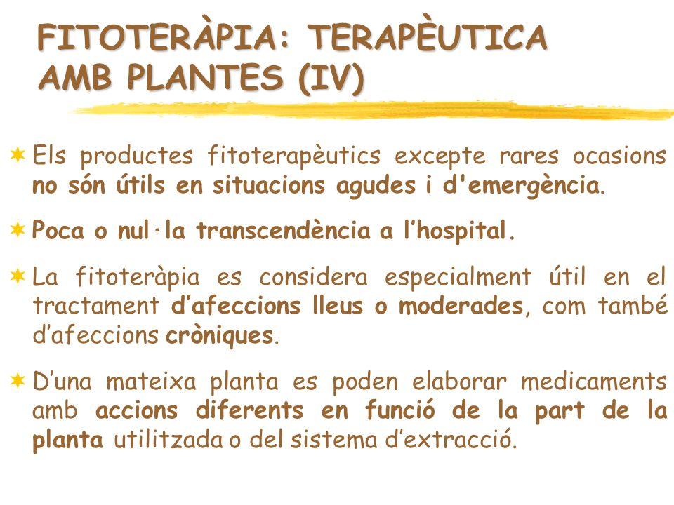 FITOTERÀPIA: TERAPÈUTICA AMB PLANTES (IV)