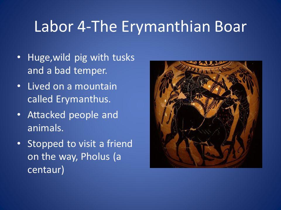 Labor 4-The Erymanthian Boar