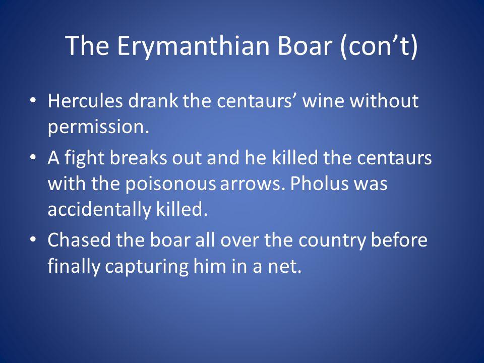 The Erymanthian Boar (con't)