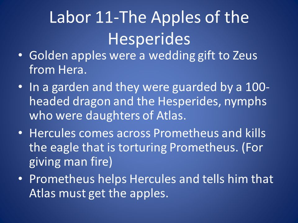 Labor 11-The Apples of the Hesperides