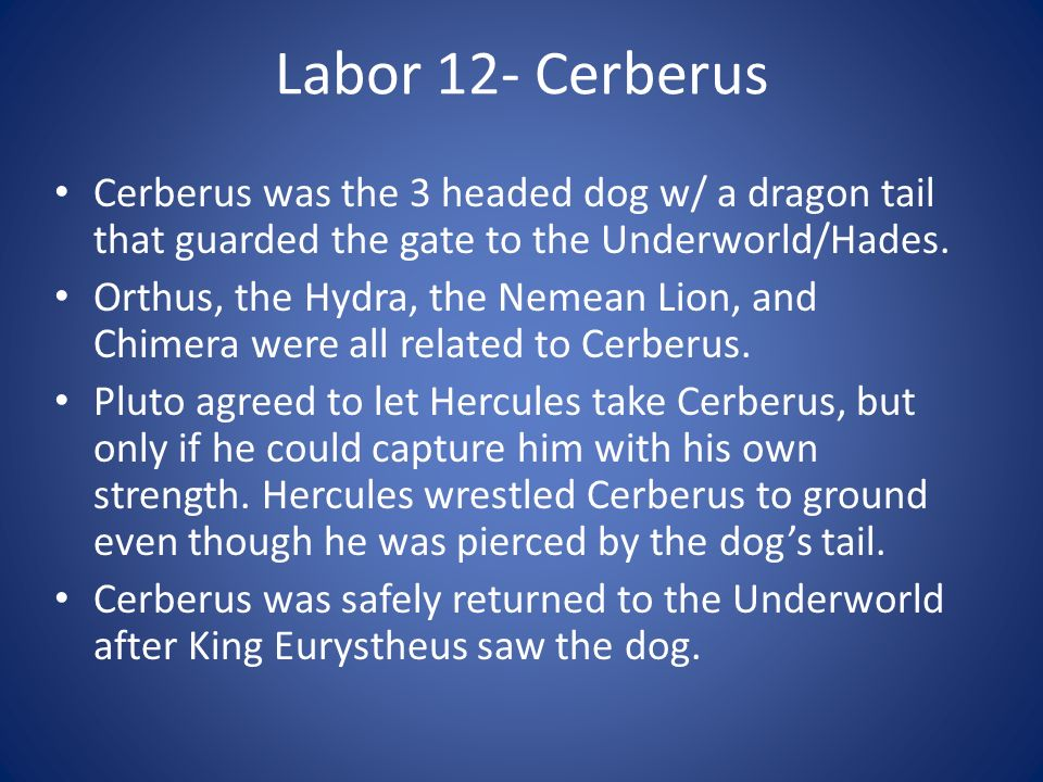 Labor 12- Cerberus Cerberus was the 3 headed dog w/ a dragon tail that guarded the gate to the Underworld/Hades.