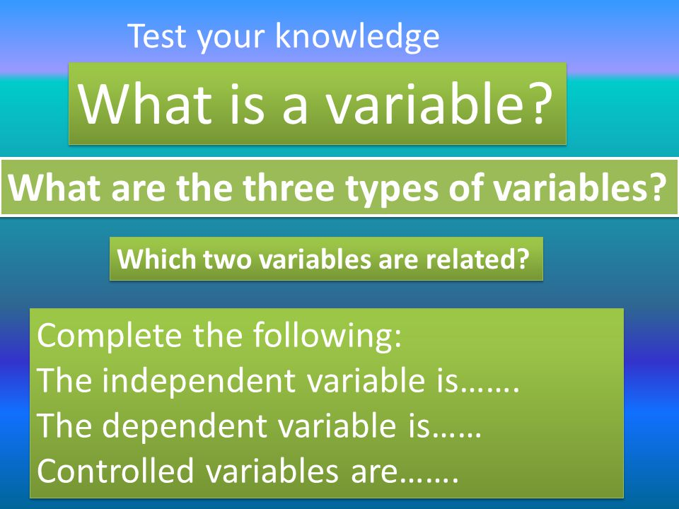 What is a variable What are the three types of variables