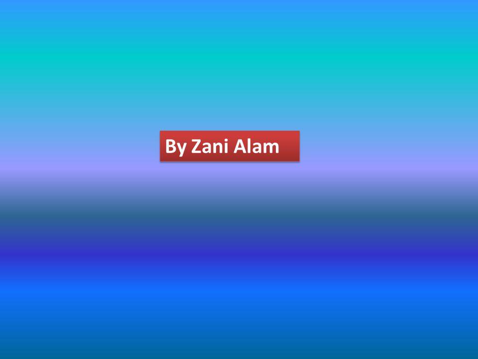 By Zani Alam