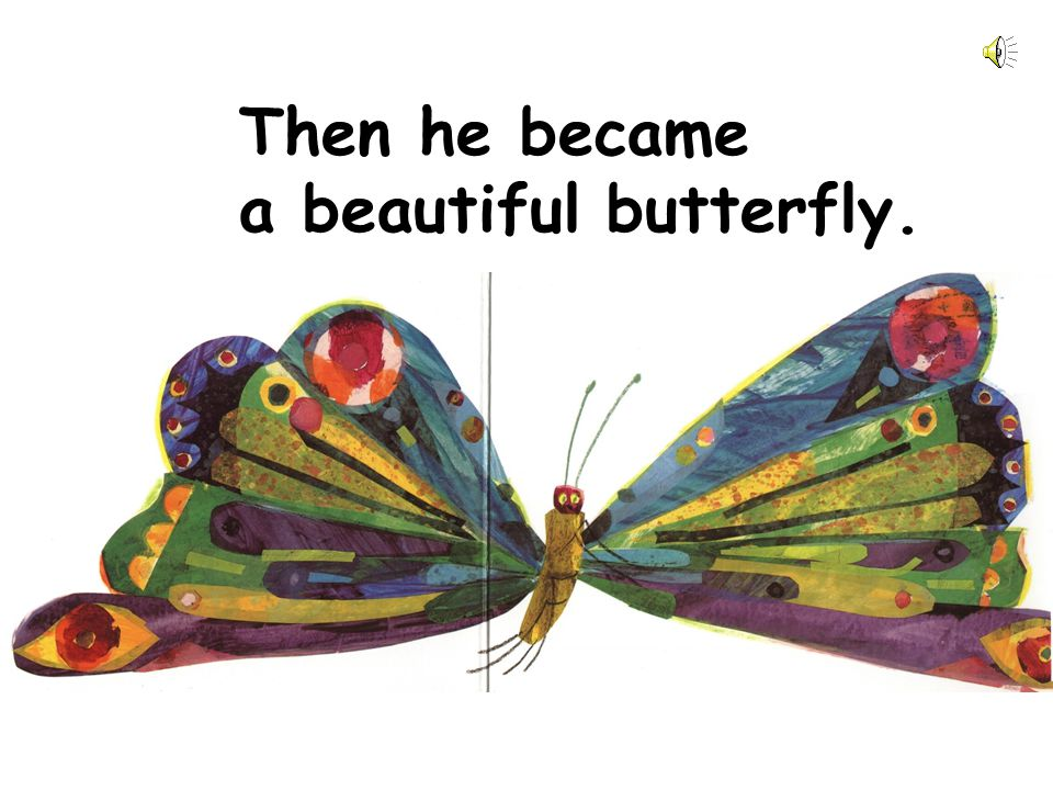 Then he became a beautiful butterfly.