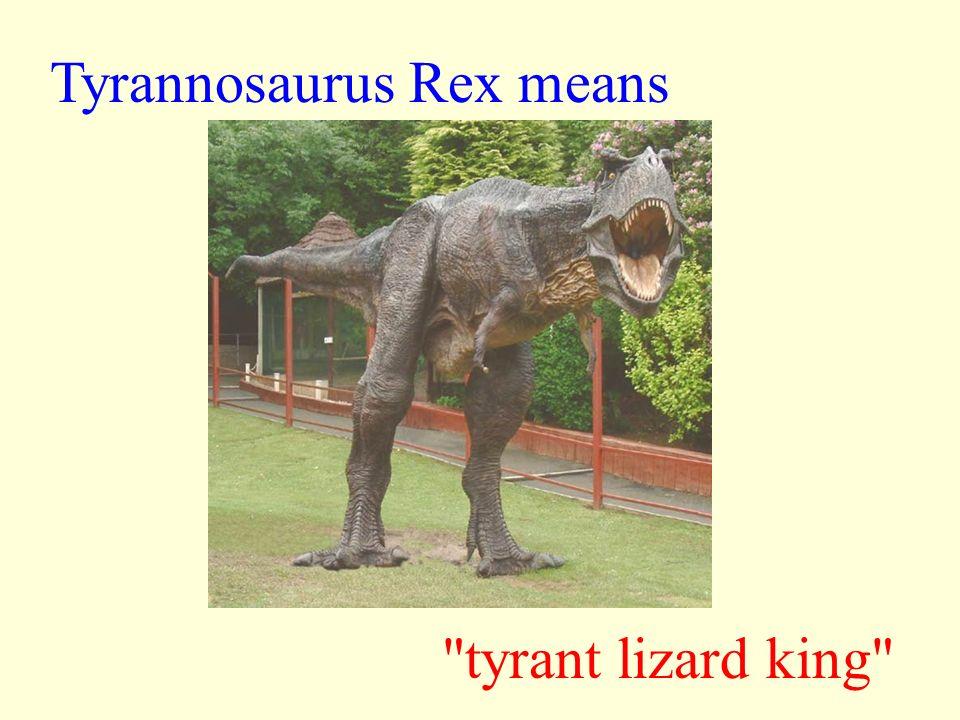 Tyrannosaurus Rex means